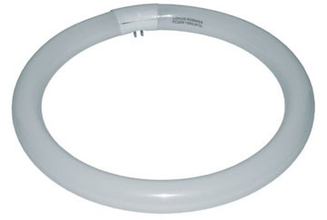 Tub fluorescent circular LOHUIS, G10q-4, 32W, 8000 ore, lumina rece